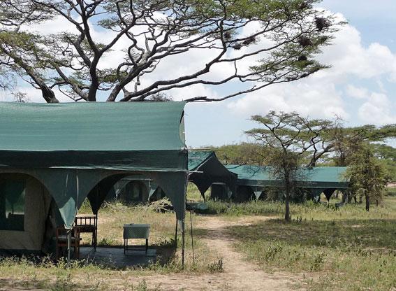 Kirurumu Serengeti Camps