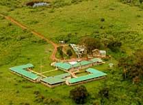 Rhino Lodge