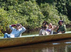 Watch wildlife from the water in Madidi