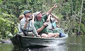 Rio and Amazon Cruise - Tucano