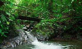 Spend time exploring 2 lovely locations in Costa Rica