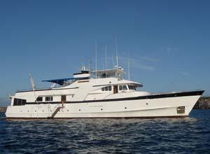 Beluga, Galapagos