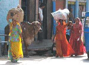 Women in Jodhpur