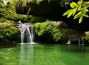 Enjoy a swim in a natural pool