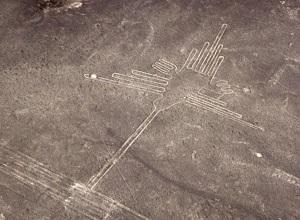Nazca Lines, Hummingbird