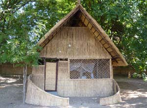 Rustic accommodation at Luwi Camp
