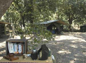 The walking mobile camp in South Luangwa