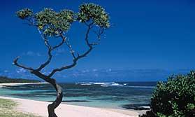 Mauritius and Rodrigues