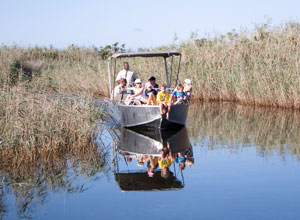 Boat trip from Kosi Forest Lodge